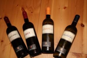 Erlesene sonnenverwöhnte Weinqualitäten vom Weingut Santadi im Sulcis-Iglesiente